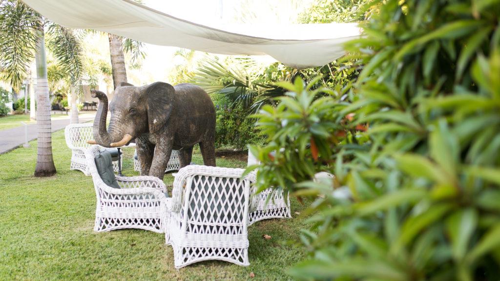 Photos d'hôtel à la Réunion - Jardin extérieur de l'hôtel & SPA Villa Delisle ****